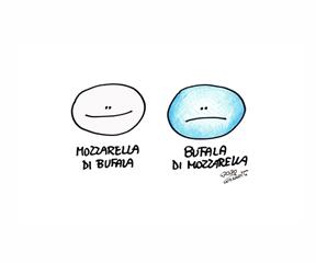 bufala-miniatura-2