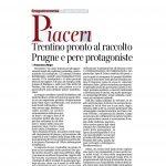 03-09-2016 Corriere dell'Alto Adige Trentino pronto al raccolto Prugne e pere protagoniste