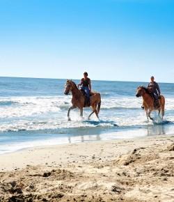 In vacanza con il tuo cavallo nella piccola Camargue d'Italia