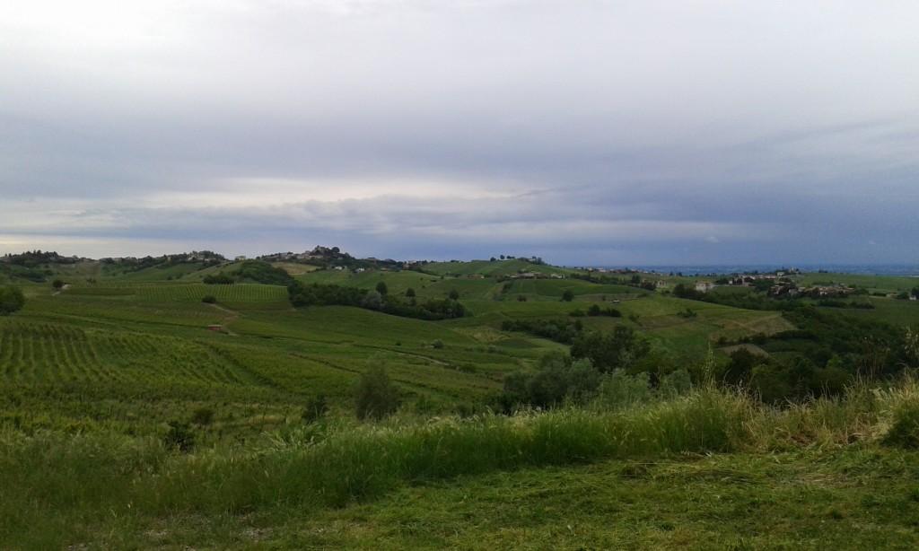 Vista verso nord da Boffalora, San Damiano al Colle (PV)